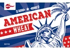 American Wheat - Extract Beer Brewing Kit (5 Gallons)