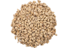 Great Western White Malted Wheat