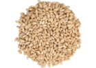 Raw White Wheat Malt - Briess Malting