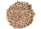 Special Roasted Malt - Briess Malting