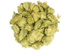 Willamette Hops (Whole Cone)