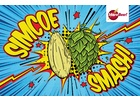 Simcoe® SMaSH IPA - All Grain Beer Brewing Kit (5 Gallons)