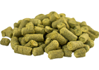 NZ Green Bullet Pellet Hops, 44 lb Box - 2016 Crop Year