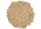 Viking Oat Malt