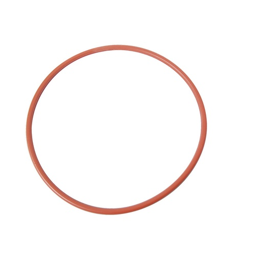 Braumeister Replacement Malt Pipe Gasket - 200 L