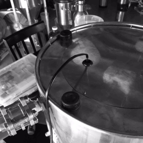 Ss BrewTech MTSs Temperature Control for InfuSsion Mash Tuns