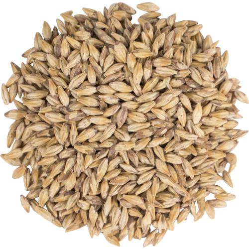 Briess Carapils Malt