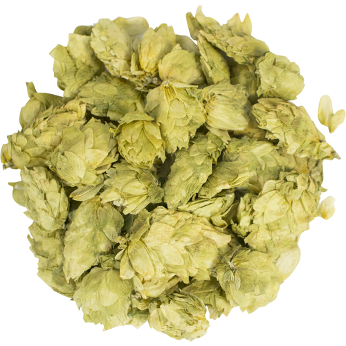Whole hop cones for brewing