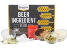 Stout Beer Brewing Kit (1 gallon)