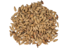 Melanoidin Malt - Weyermann® Specialty Malts
