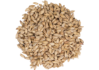 Pale Ale Malt - Briess Malting