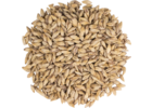 Carapils Malt - Briess Malting