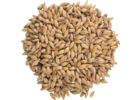 CaraRed® Malt - Weyermann® Specialty Malts
