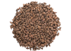 Chocolate Malt - Bairds Malt