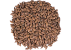 Pale Chocolate Malt - Crisp Malt