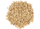 CaraAmber® Malt - Weyermann® Specialty Malts