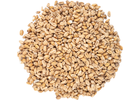 Wheat Malt - Viking Malt
