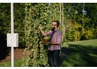 IBEX Hops Growing System™