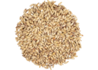 Abbey Malt® Malt - Weyermann® Specialty Malts