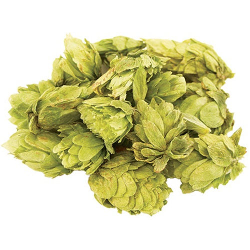 Cascade Whole Hops - 1 lb Bag