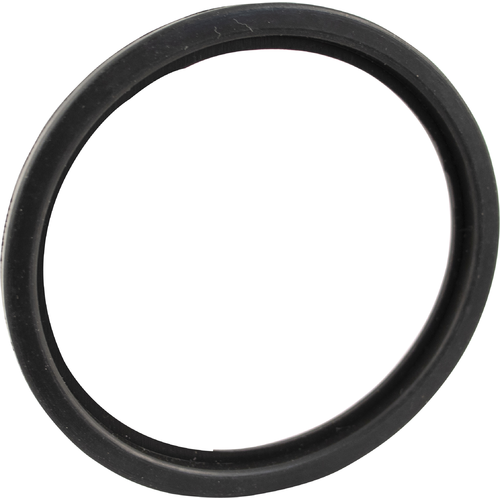 MoreBeer! Pro Tank Replacement DIN Gasket - 2.5 in