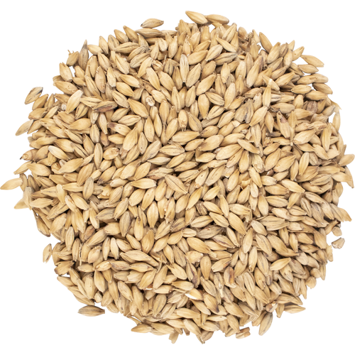 Viking 2-Row Pale Malt