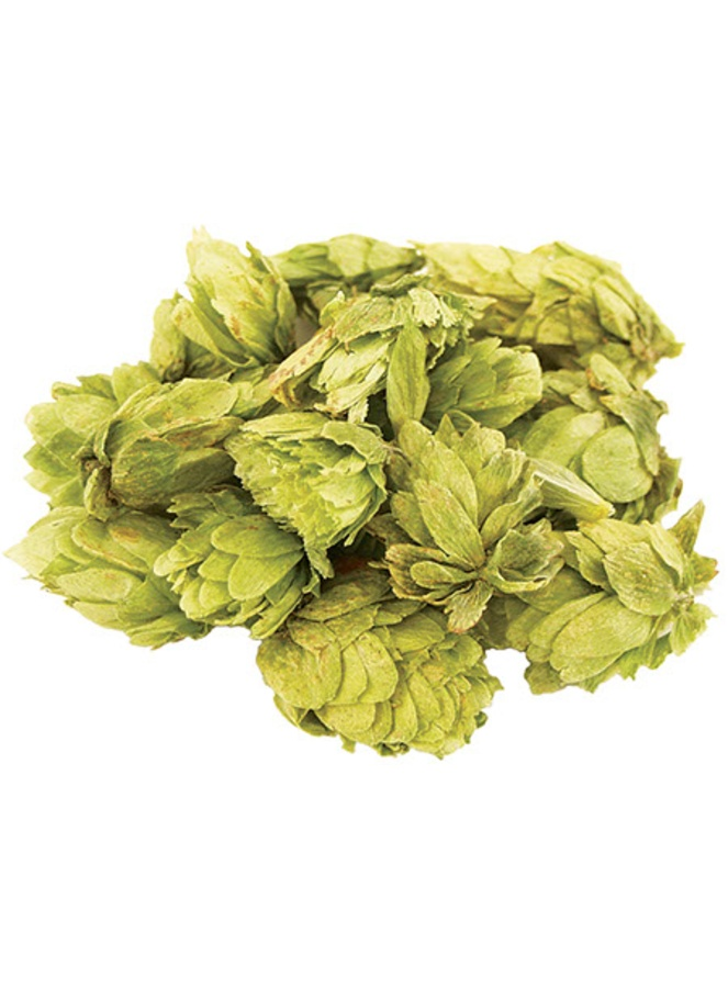 Citra Whole Hops 2 Oz Morebeer